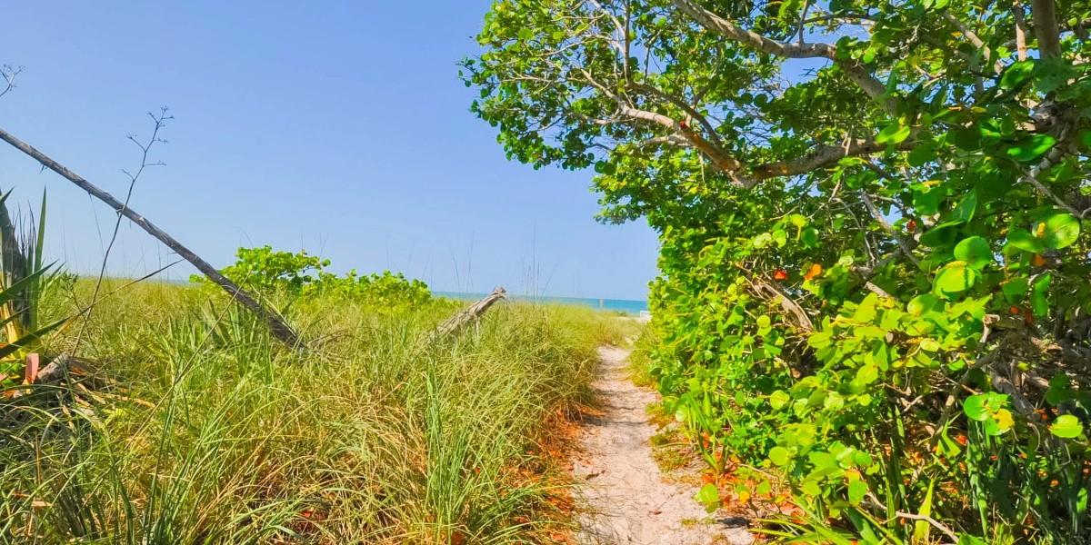 99_s_BeachSt_BeachAccess1