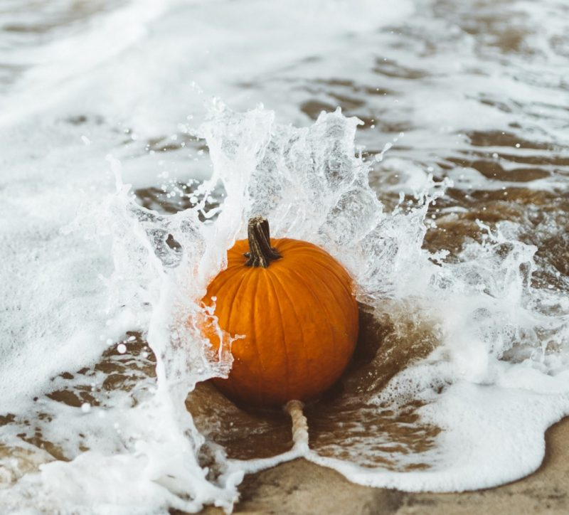 pumpkin in waves on the beach